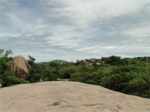 Domínio de colinas dissecadas com campo de matacões, indicando a predominância do intemperismo físico. Município de Cerro Corá.